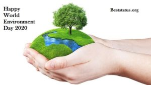 World Environment Day Status, Wishes, Message, SMS, Images For Whatsapp 2020