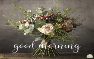 Good Morning Status For Facebook, Whatsapp Status, Quotes, Messages For All