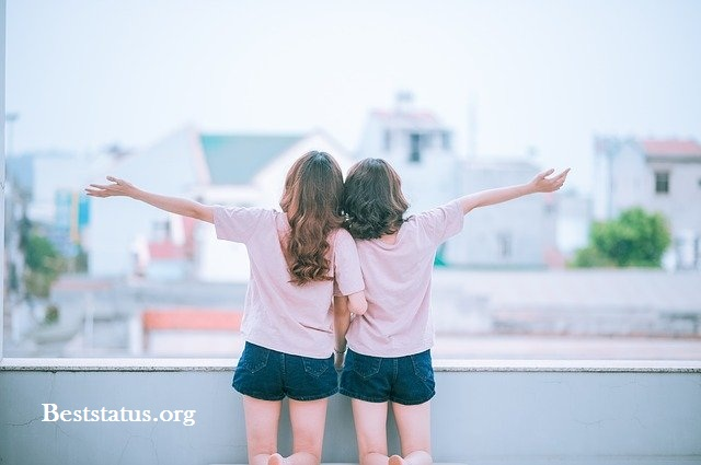 International Friendship Day Quotes to enjoy and share with loved ones.