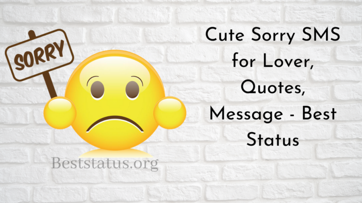 Cute Sorry SMS for Lover, Quotes, Message - Best Status