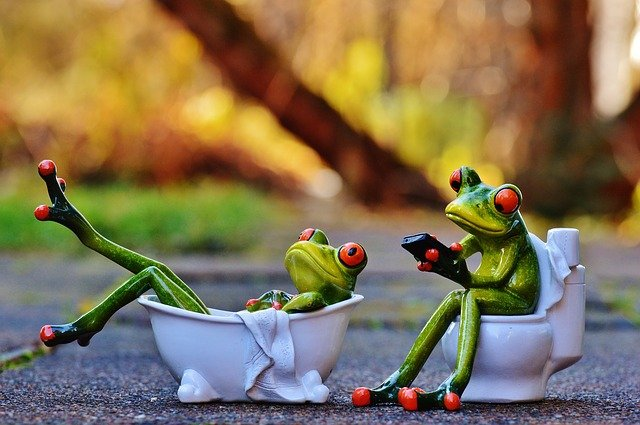 World Toilet Day 2020: Quotes, Status, Theme, jokes, Facts
