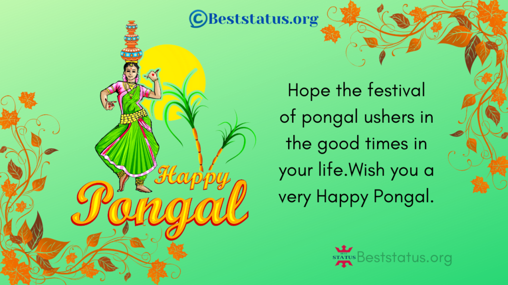Best pongal SMS Gifs