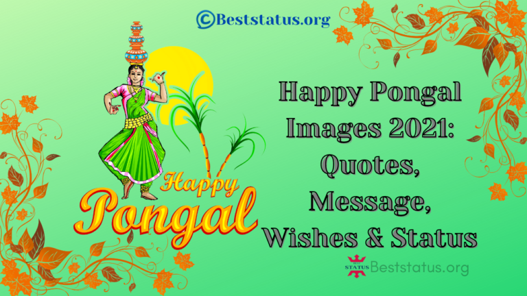 Happy Pongal Images 2021: Quotes, Message, Wishes & Status