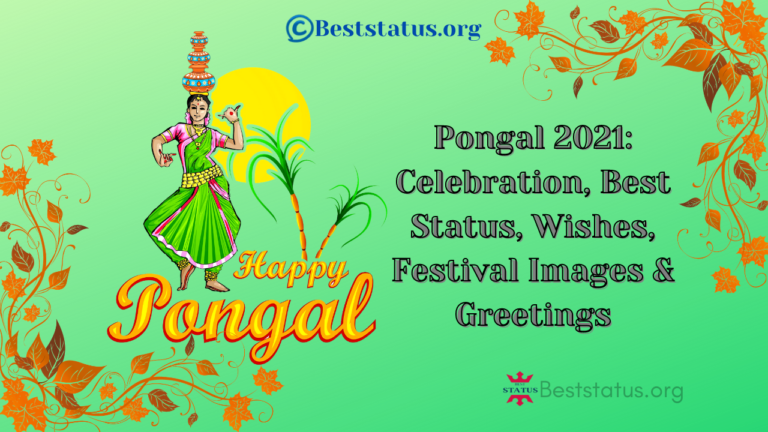 Pongal 2021: Celebration, Best Status, Wishes, Festival Images & Greetings