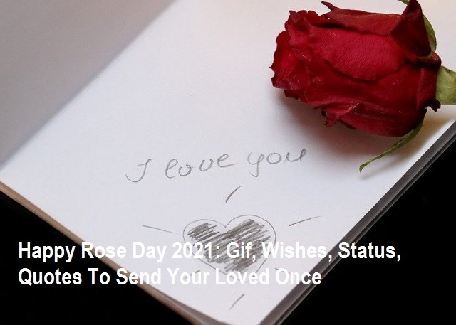 Happy Rose Day 2021: Gif, Wishes, Status, Quotes To Send Your Loved Once