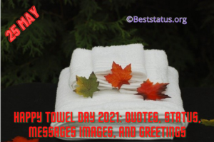 Towel Day Wishes Images