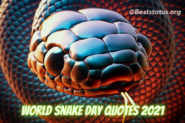 30+ World Snake Day: Best Quotes, Messages Status, And Greetings