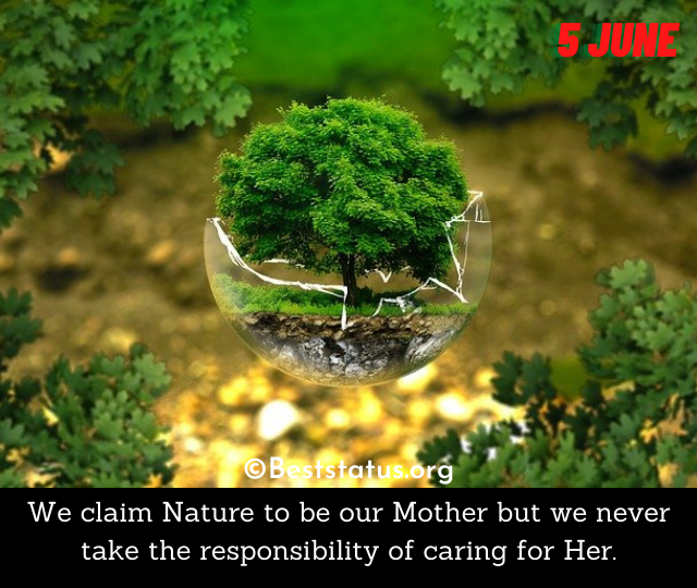 World Environment Day messages